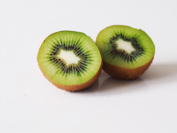 Hayward kiwi exporters in world